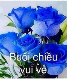 chuc-buoi-chieu-vui-ve-2