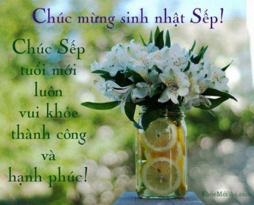 loi-chuc-mung-sinh-nhat-17