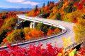 Chọn lọc 99+ hình ảnh mùa thu lãng mạn – lâng lâng cảm xúc giao mùa