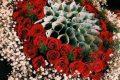 [TẢI] 199+ hình ảnh bó hoa đẹp lung linh gửi trao yêu thương