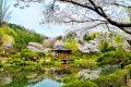 101 hình ảnh phong cảnh Hàn Quốc đẹp, mê hoặc lòng người